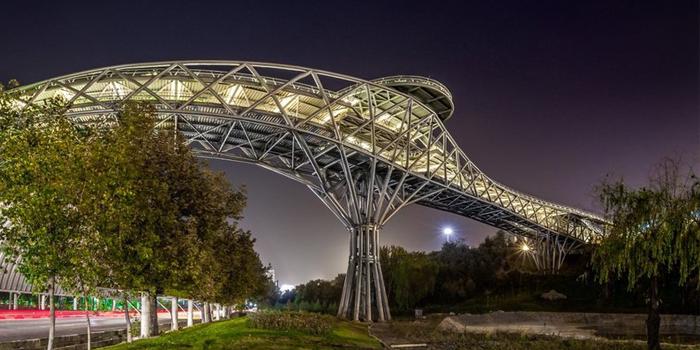 مهندسی معماری - پل طبیعت