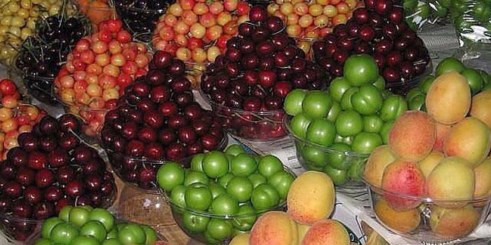 بهترین زمان مصرف میوه