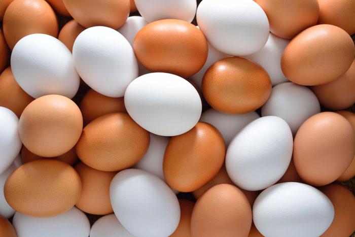 مصرف یک عدد تخم مرغ در روز